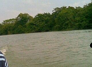 Tamesí River river in Mexico