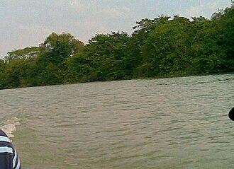 Tamesí River - Image: Rio tamesi