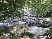 Rivière du Partusu.jpg