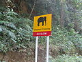 Road view to and from OOTY (170).JPG