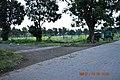 Roads inside Kalyani, West Bengal 06.jpg