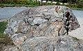 Roche moutonnée (Frenchman Bay overlook, Acadia National Park, Maine, USA) 5.jpg
