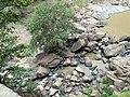 Rocks near Dunhida fall.jpg