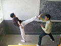 Roundhouse kick hip extension.jpg