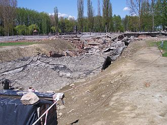 Criticism of Holocaust denial - The ruins of the Crematorium II gas chamber at Auschwitz-Birkenau.