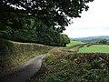 Rural road - geograph.org.uk - 563163.jpg