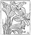 Rydel Lucjan - Poezye page 0057.jpg