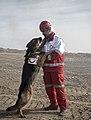 SAR dogs training centers, RCS, Tehran (53887).jpg