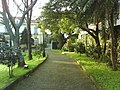 SMG PDL SPd Universidade Açores path.jpg