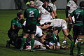 ST vs Connacht 2012 72.JPG