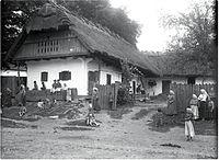 S slamo krita dobrovniška hiša iz leta 1904.jpg