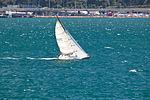 Sail Wellington New Zealand-6553.jpg
