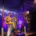 Sammersee 2014 Festival Kofelgschroa (09).jpg