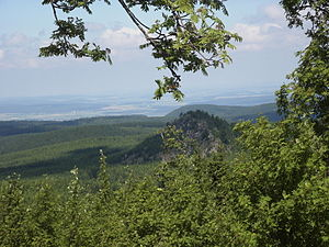 Harz National Park - View of the Scharfenstein