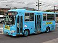 Seibukogenbus-A6-313.JPG