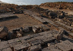 New York University Institute of Fine Arts - Selinunte, Italy excavation site