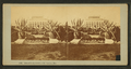 Shaw's Garden, St. Louis, Mo, from Robert N. Dennis collection of stereoscopic views.png