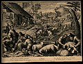 Sheep are sheared and wheat is reaped; representing summer. Wellcome V0007613.jpg
