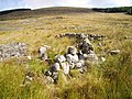 Sheep pen on the lower slopes of the Millfire Ridge - geograph.org.uk - 545323.jpg