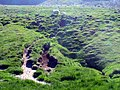 Sheep range (1174861069).jpg