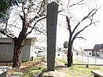 Shingen-ko Hatakake-matsu pine tree Monument.A.JPG