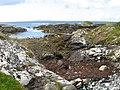Shore and Inish Mor - geograph.org.uk - 1438774.jpg