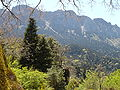 Sierra del Pinar (panorámica).JPG