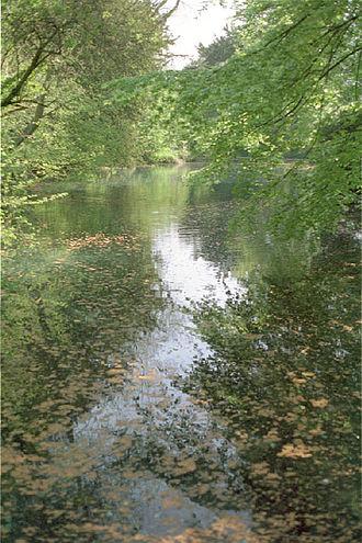 Godalming Hundred - Silent Pool near Albury