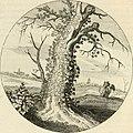 Silenus Alcibiadis, sive, Proteus - vitae humanae ideam, emblemate trifariàm variato, oculis subijciens (1618) (14745851374).jpg