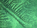 Silica Nanoparticles 2.jpg