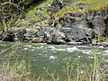 Silver Fork American River at Riverton - panoramio.jpg