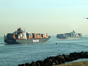 Singapore Express & Nyk Lyra, Port of Rotterdam, Holland 24-Jan-2006.jpg