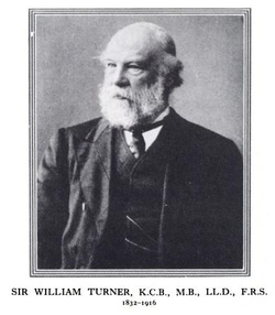 Sir william turner 1832 1916