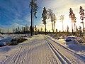 Ski track Mustavuori.jpg