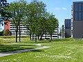 Skovgårdsparken (sommer).jpg