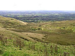 Slieve Gallion - geograph.org.uk - 539397.jpg