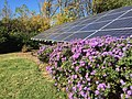 Solar panels Knoxville office.jpg