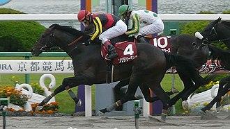 Tokai Stakes - 2012 Tokai Stakes
