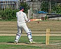 Southwater CC v. Chichester Priory Park CC at Southwater, West Sussex, England 038.jpg
