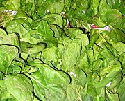 Spinach packed for sale in a market