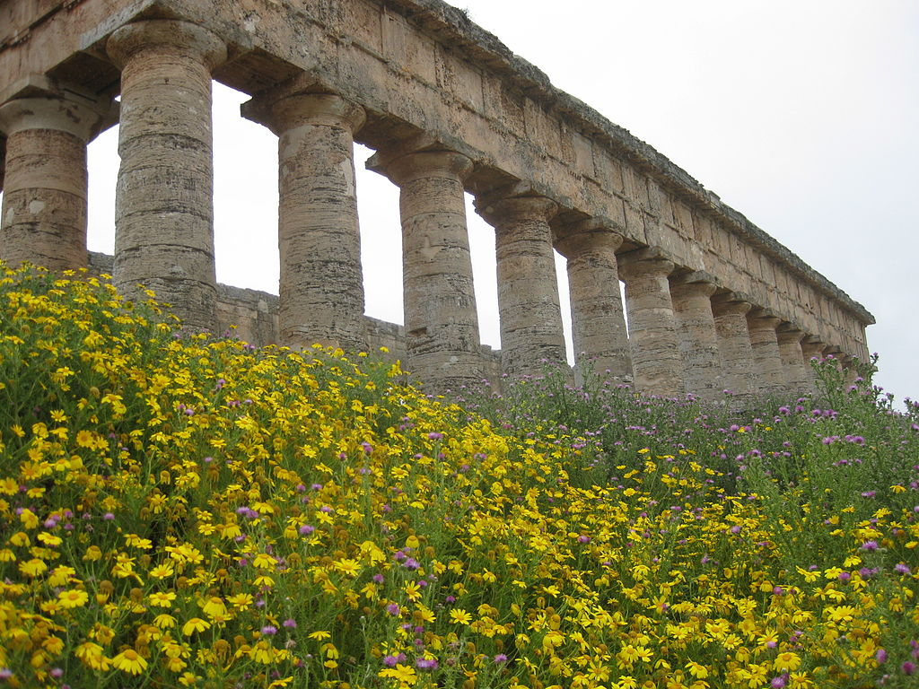 Spring at the temple at Segesta