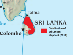Sri Lanka elephant map.png