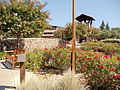 St. Francis Winery and Vineyard, Santa Rosa, California, USA (6710753205).jpg
