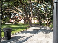 St Petersburg FL Casa De Muchas Flores01.jpg
