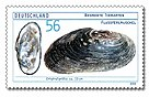 Stamp Germany 2002 MiNr2266 Flussperlmuschel.jpg