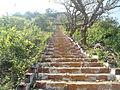 Steps leading to Upamaka Temple.JPG
