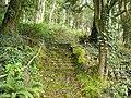 Steps up to Mount Davidson (4425795847).jpg