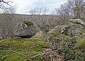 Stones at Ropotamo reserve, Bulgaria - валуны в заповеднике Ропотамо, Болгария (25155431194).jpg