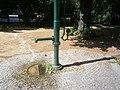 Straßenbrunnen 12 Spandau Plantage (7).jpg