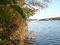Straussee - Westl. Ufer (Western Shore) - geo.hlipp.de - 29681.jpg